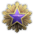 Medal za służbę 2016 Poziom 4
