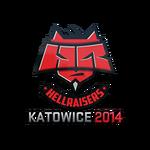 HellRaisers EMS One Katowice 2014