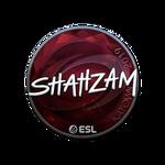 ShahZaM (Folia) Katowice'19