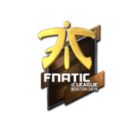 Fnatic (Folia) Boston'18