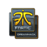 Fnatic (Folia) DreamHack Winter 2014