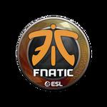 Fnatic Katowice'19