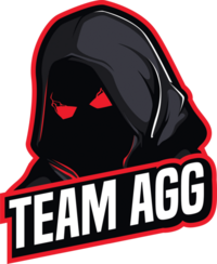 Team AGG - logo