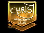 ChrisJ - naklejka Cluj'15 (złoto)