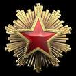Medal za służbę 2016 Poziom 6