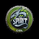 Team Spirit Katowice'19