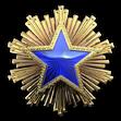 Medal za służbę 2016 Poziom 3