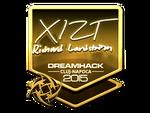 Xizt - naklejka Cluj'15 (złoto)