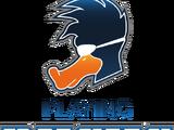 Playing Ducks International