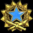 Medal za służbę 2017 Poziom 2
