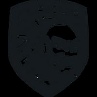 Furious Gaming - logo