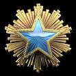Medal za służbę 2016 Poziom 2