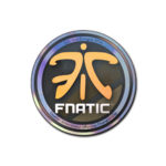 Fnatic (Holo) ESL One Cologne 2014
