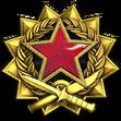 Medal za służbę 2017 Poziom 6