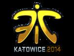 Fnatic (Folia) EMS One Katowice 2014