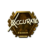 Xccurate (Gold) London'18
