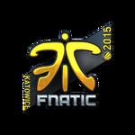 Fnatic (Folia) ESL One Katowice 2015
