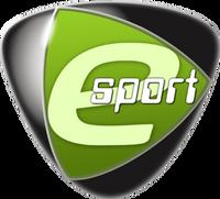 Team Acer - logo