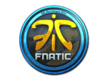 Fnatic (Folia) ESL One Cologne 2014
