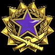 Medal za służbę 2017 Poziom 4