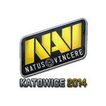 Natus Vincere EMS One Katowice 2014