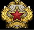 Medal za służbę 2018 Poziom 6