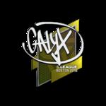 Calyx Boston'18
