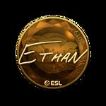 Ethan (Gold) Katowice'19