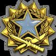 Medal za służbę 2017 Poziom 1