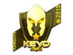 Keyd Stars (Gold) ESL One Katowice 2015