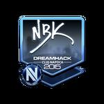 NBK- (Folia) Cluj'15