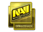 Natus Vincere (Gold) DreamHack Winter 2014