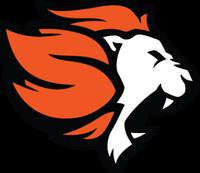 Selfless Gaming - logo