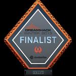 Dreamhack 2013 Finalist Trophy
