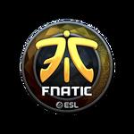 Fnatic (Folia) Katowice'19