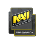 Natus Vincere DreamHack Winter 2014
