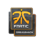 Fnatic DreamHack Winter 2014