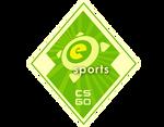 Odznaka Letniej walizki eSports 2014
