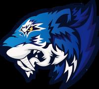Flash Gaming - logo