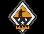 Odznaka Skrzyni CSGO 3