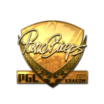 PashaBiceps (Gold) Kraków'17