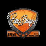PashaBiceps Kraków'17