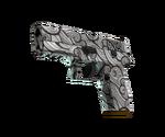 P250 Gunsmoke