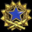 Medal za służbę 2017 Poziom 3