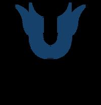 Unique Team - logo