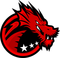 Binary Dragons - logo