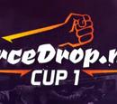 ForceDrop.net Cup 1
