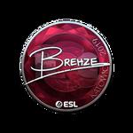Brehze (Folia) Katowice'19