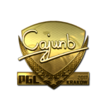 Cajunb (Gold) Kraków'17