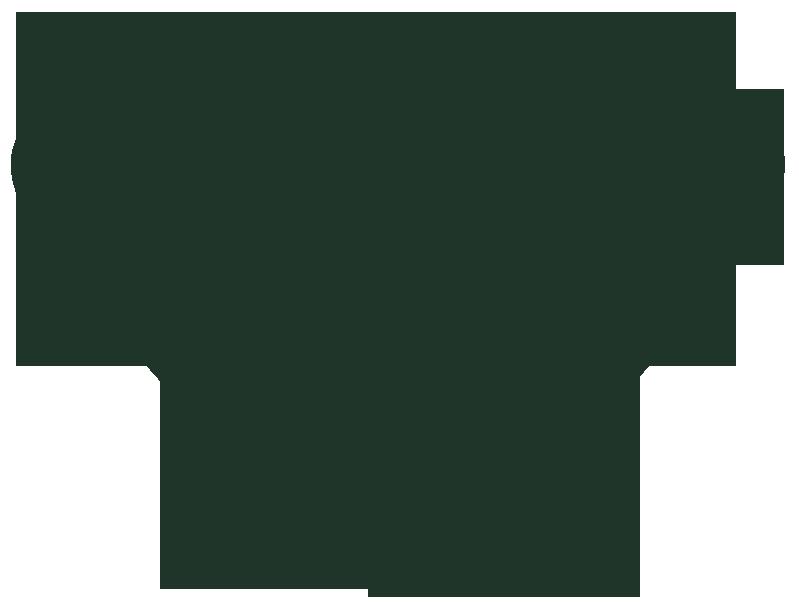 AliGon - logo